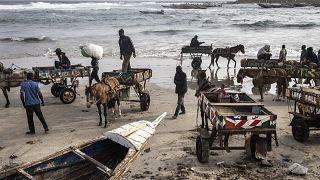 Senegal capital struggles to control horse-drawn carts