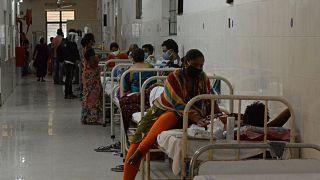 الهند: داء الفطر الأسود