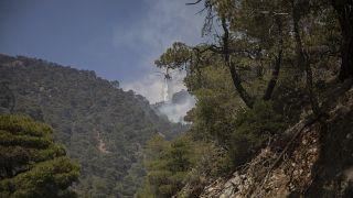Trabajos en Grecia para extinguir el fuego el 21 de mayo de 2021