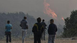 Incendi in Grecia e alle Canarie; la Russia lotta con l'alluvione