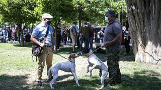 Συγκέντρωση στην Πλατεία Συντάγματος για τα ζώα συντροφιάς