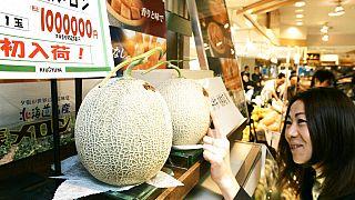 Japonya'nın en ünlü kavunları Yubari yüksek fiyatlara satılmasıyla biliniyor.