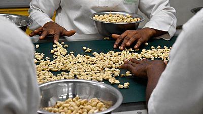 La Côte d'Ivoire veut conquérir le marché américain de noix de cajou