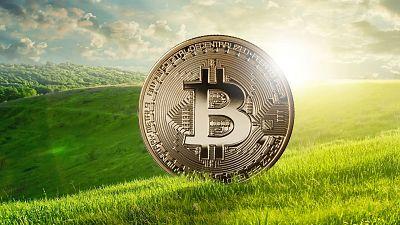 bitcoin ecology classifica exchange crypto