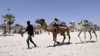 Tunisia hopes to revive tourism sector via Eastern European visitors