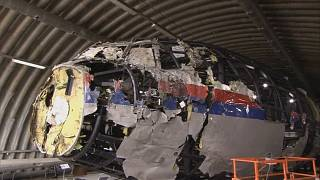 Crash du MH17 : l'épave du Boeing inspectée par les juges néerlandais