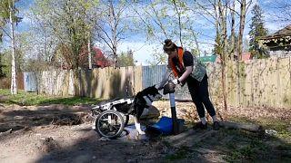 """Волонтер из приюта """"Особый друг"""" гуляет с собакой"""