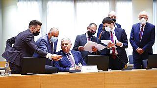 Agriculture européenne : à Bruxelles, la PAC dans l'impasse