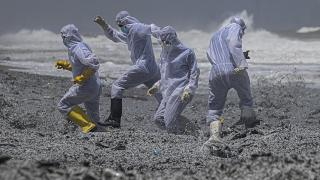 le littoral du Sri Lanka souillé par la cargaison chimique du porte-conteneur MV X-Press Pearl