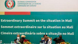 La Cedeao suspend le Mali de son organisation