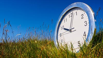 Did you know plants can tell the time?