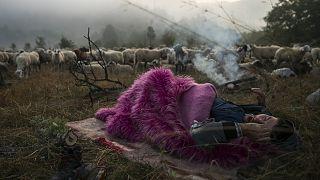 Το Βραβείο Athens Photo World κέρδισε ο Δημήτρης Τοσίδης με το θέμα «Διάβα, νομαδικός ποιμαντισμός στην ορεινή Βόρεια Ελλάδα».