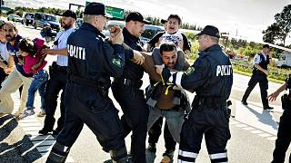 n this Sept. 9, 2015 file picture police grab a refugee as hundreds of refugees walk in Southern Jutland motorway near Padborg in Denmark
