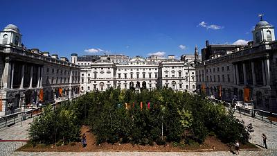 The 'Forest for Change' in the courtyard of Somerset House, as part of the London Design Biennale.