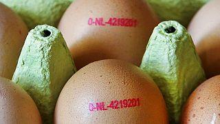 2017 wurden 73.000 mit Fipronil verseuchte Eier aus den Niederlanden aus deutschen Supermärkten zurückgerufen