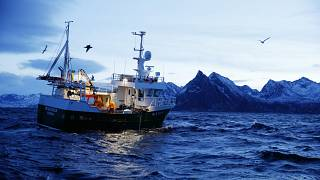 This is a Jan 1 2016 file photo of Jan Gunnar Johansen and Trond Dalgard as they fish for cod from the vessel Buaodden in the Norwegian Sea near Gryllefjord, northern Norway.