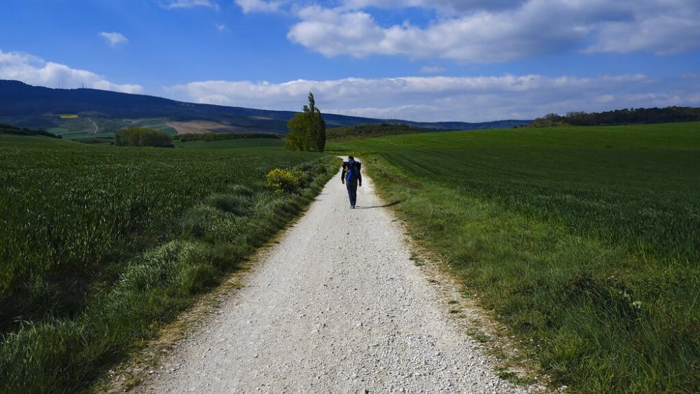 Pilgrims in Spain walk the Camino again to reach Santiago's cathedral