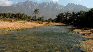 جزيرة سقطرى اليمنية، 27 مارس 2008