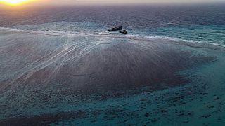 ONU : une journée mondiale de l'Océan pour une gestion durable