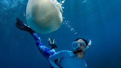 Celine Cousteau diving with jellyfish