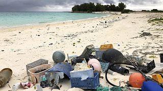 Día Mundial de los Océanos: las principales amenazas a su sostenibilidad