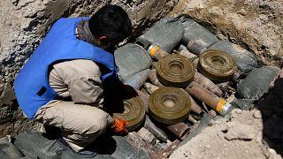 خبير في إزالة الألغام يجمعها قبل تفجيرها وتدميرها في 'حدى ضواحي العاصمة الأفغانية كابول. 24/05/2017