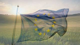 """The """"EU Biodiversity Strategy for 2030: Bringing nature back into our lives"""" was adopted by the European Parliament"""