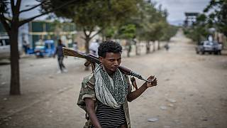UN report alleges Somalia troops fought in the Tigray war