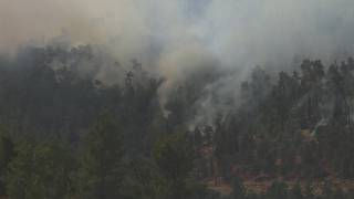 incêndio obriga ao corte da estrada que liga Jerusalém e Telavive