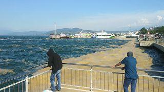 İstanbul'da deniz salyası