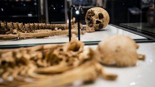 Викинги-родственники в Национальном музее Дании
