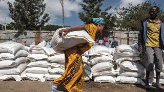 Ethiopie : l'ONU appelle à un cessez-le-feu au Tigré