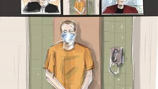 In this courtroom artist's sketch, Nathaniel Veltman makes a virtual appearance in court