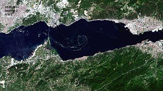 İTÜ,  Marmara Denizi'nde ortaya çıkan müsilajı (deniz salyası) uydu aracılığıyla uzaydan görüntüledi