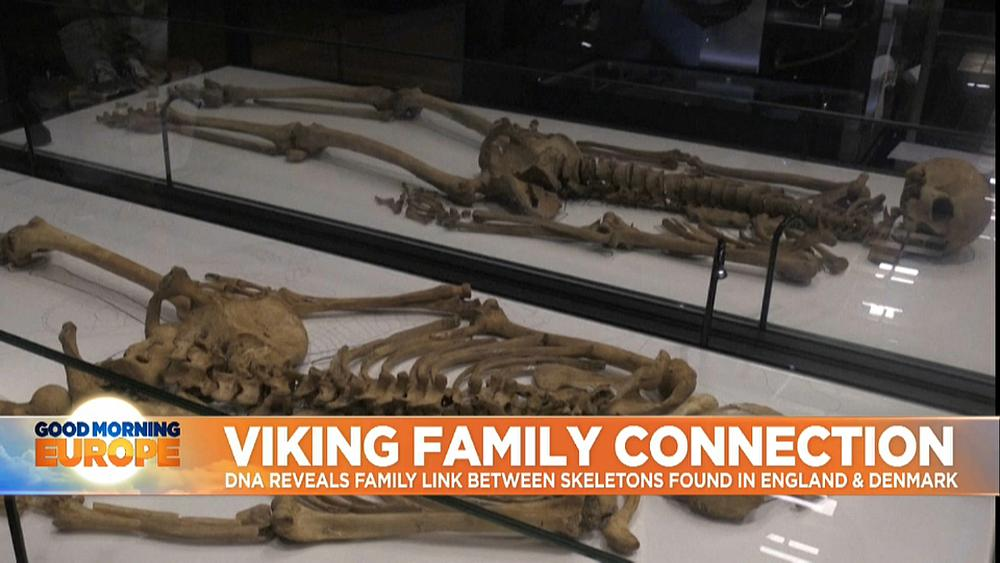 Skeletons of two related Viking men reunited in Denmark for first time