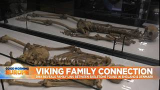Separated for 1,000 years, two Viking warriors from the same family are reunited at Denmark's National Museum.