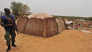 Burkina Faso : une dizaine de terroristes tués lors d'une embuscade