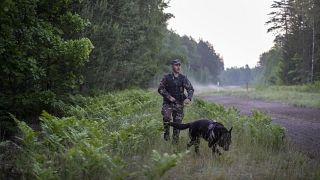 ¿Está usando Bielorrusia los flujos migratorios como arma política?