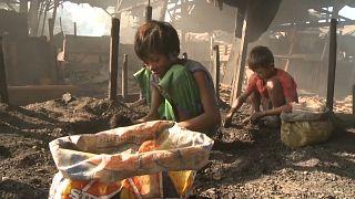 160 millions d'enfants obligés de travailler dans le monde