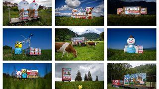 Kampagne auf dem Feld (gegen Pestizid-Initiative)