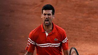 Serbia's Novak Djokovic defeats Stefanos Tsitsipas of Greece 6-7, 2-6, 6-3, 6-2, 6-4 to win the French Open Sunday, June 13, 2021