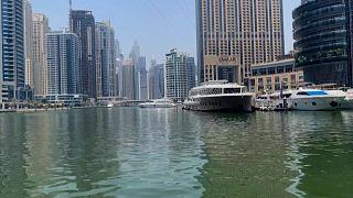 تباعد اجتماعي في يخوت دبي