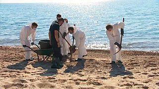 Bombeiros limpam praias da Córsega