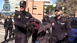 İspanya'da 69 yaşındaki annesini öldürüp, cesedini yemekle suçlanan şahıs