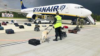 Security use a dog to check the luggage of passengers on the Ryanair jet that carried opposition figure Raman Pratasevich, traveling from Athens to Vilnius, Lithuania.