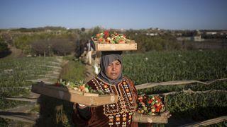 في بيت لاهيا شمال قطاع غزة (أرشيف)