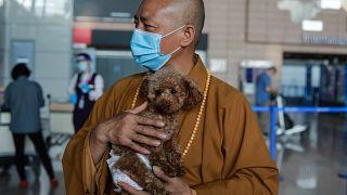 زيانغ مودعاً أحد الكلاب التي سيرسلها إلى الولايات المتحدة