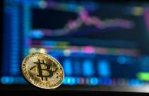 recenzii bitcoin trader câte portofele bitcoin pot avea