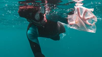 The amount of plastics which are dumped in the oceans annually poses a danger to our already endangered marine life