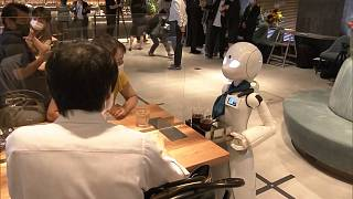Avatar robot is taking order and serving customers